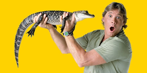 Steve Irwin holding a baby crocodile against a yellow background.