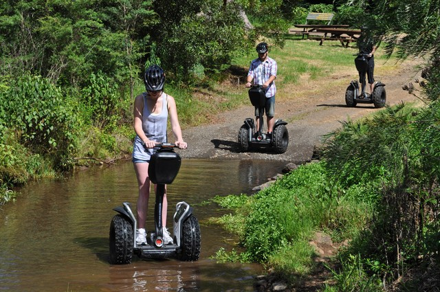 O'Reilly's Rainforest Retreat Segway Tour - Discover Queensland