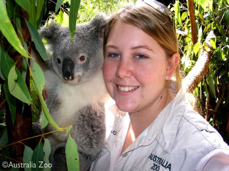 Australia Zoo - Discover Queensland