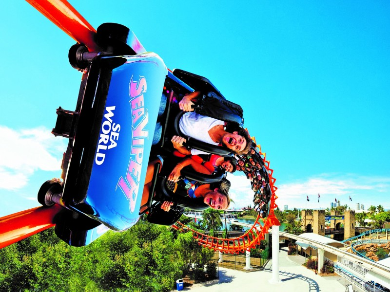 Sea World Sea Viper Roller Coaster - Gold Coast Theme Parks - Discover Queensland