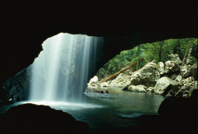 Natural Arch in Springbrook National Park, Gold Coast Hinterland - Discover Queensland