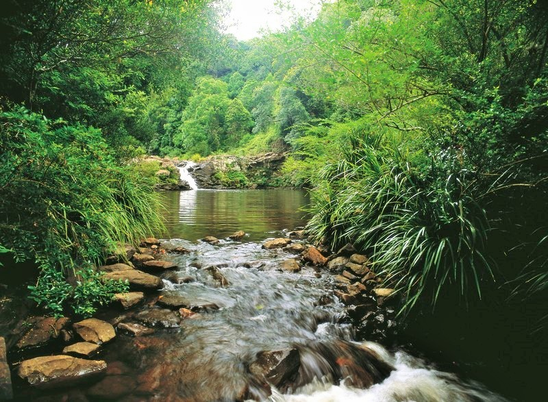 Maleny in the Sunshine Coast Hinterland - Discover Queensland