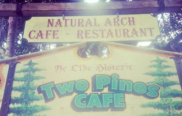 Natural Arch Cafe in Springbrook National Park - Discover Queensland