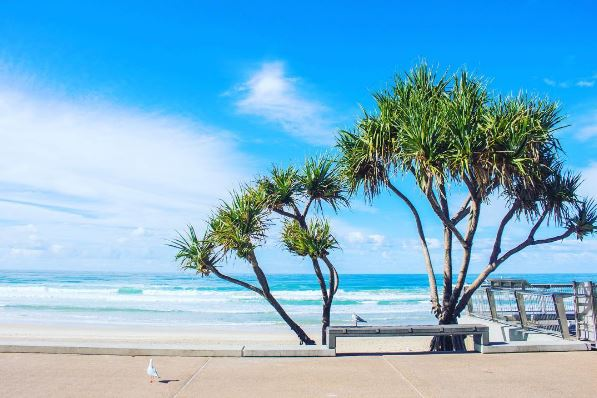 Surfers Paradise Beach - Discover Queensland