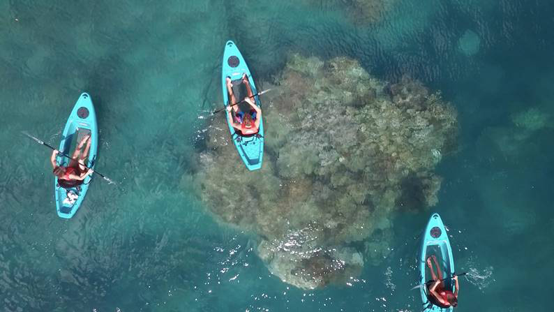 Glass Bottom Kayaks on Daydream Island | Discover Queensland
