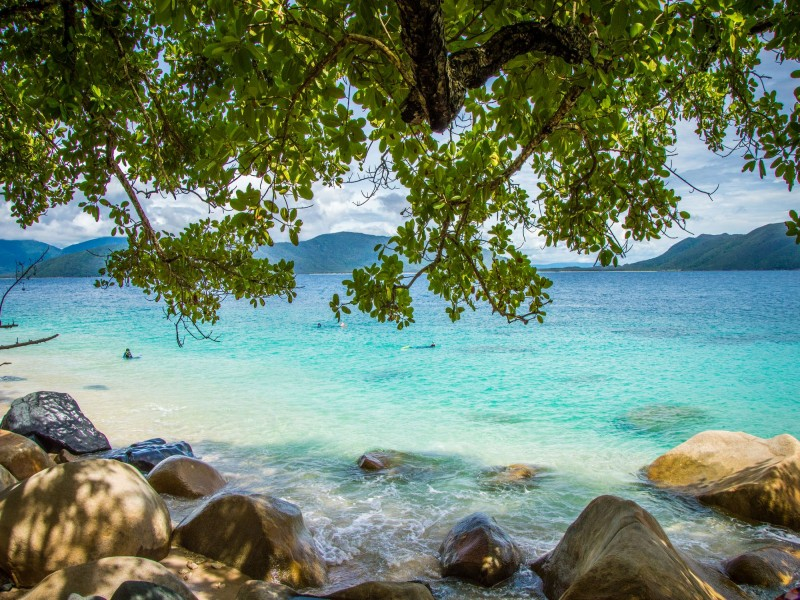 Snorkellers on Fitzroy Island Beach on the Great Barrier Reef | Discover Queensland