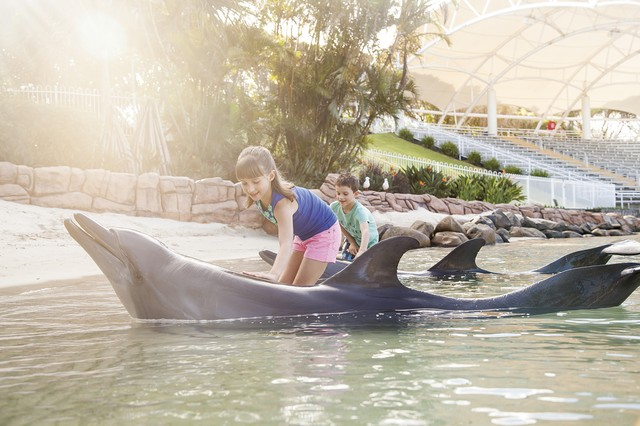 Sea World Resort - where family magic happens - Discover Queensland