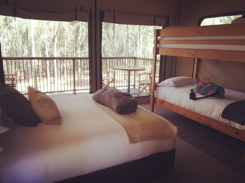 Paradise Country Farmstay Eco Tent | Discover Queensland