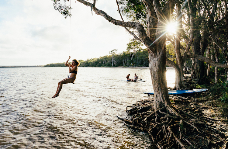 The Noosa Everglades   Your Guide to the Sunshine Coast   Discover Queensland