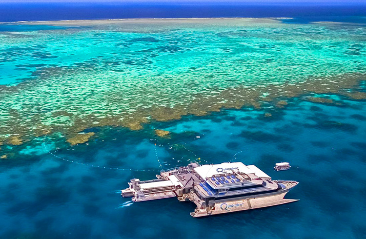 Diving or Snorkelling on the Great Barrier Reef off Port Douglas | Your Guide to Port Douglas | Discover Queensland