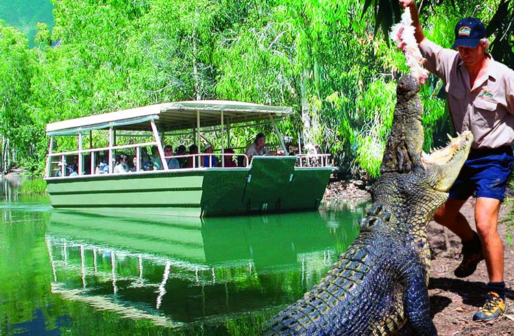 Hartleys Crocodile Adventures - one of the best things to do in Port Douglas | Your Guide to Port Douglas | Discover Queensland