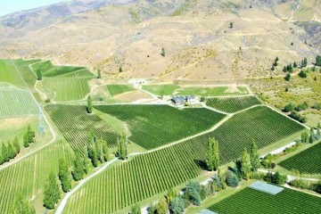Felton Road Winery Aerial View of Vineyards - Queenstown Holidays