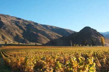 Mt Rosa Winery - Queenstown Holidays