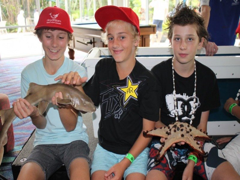 Three boys sitting with a shark and starfish from the Daydream Island Living Reef.