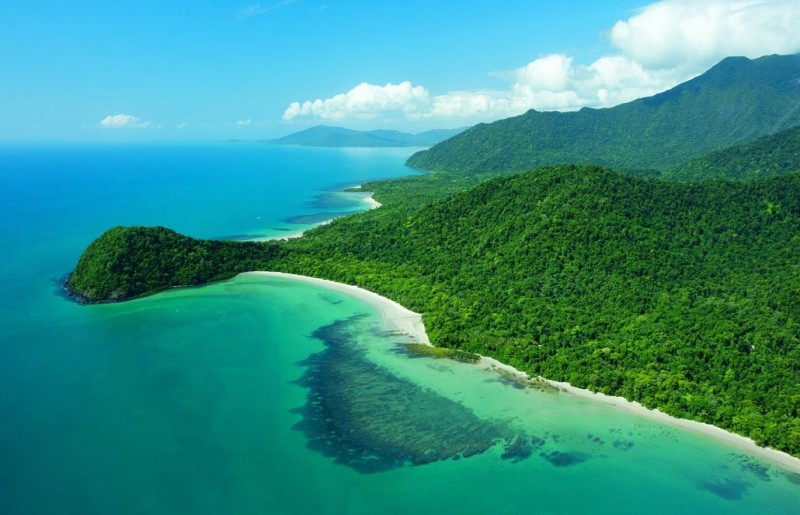 Birds eye view of the sub-tropical rainforest framing the aqua blue water coastline of Port Douglas.