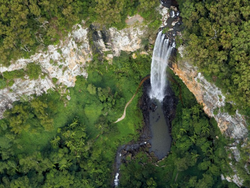 Top Five things to do on the Gold Coast - Hinterland Walks to Waterfalls