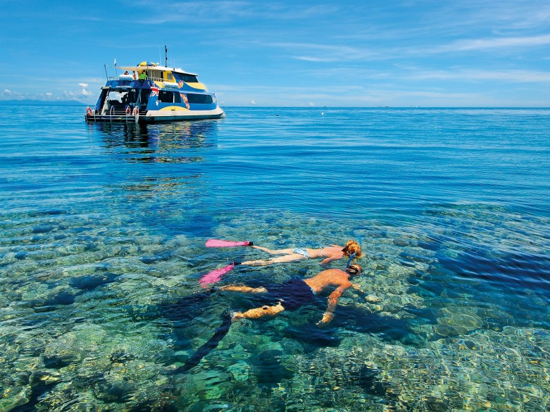 Snorkeling on Opal Reef off Port Douglas on a very calm day - Discover Queensland
