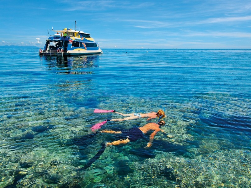 Snorkelling on the Great Barrier Reef off Palm Cove in Tropical North Queensland - Hightide Holidays