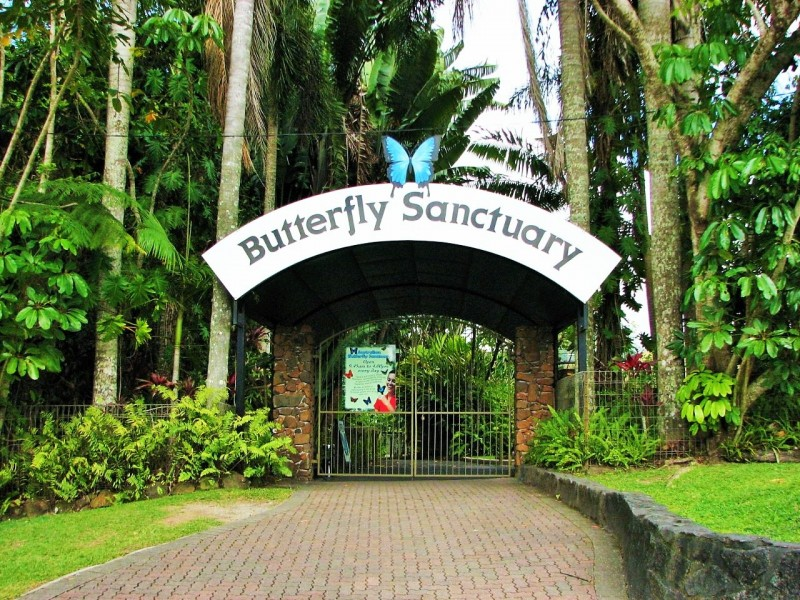 Cairns Attractions | Australian Butterfly Sanctuary | Tropical North Queensland - Hightide Holidays