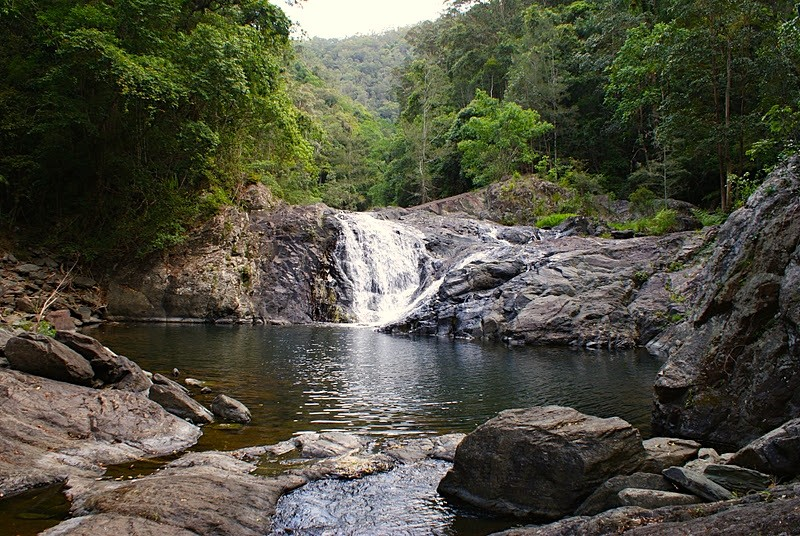 Artists Cascades Waterfall on the Sunshine Coast  - Discover Queensland