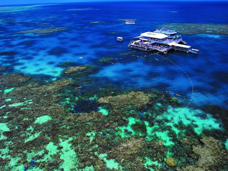 Quicksilver Reef Cruise out to the Great Barrier Reef off Port Douglas - Discover Queensland