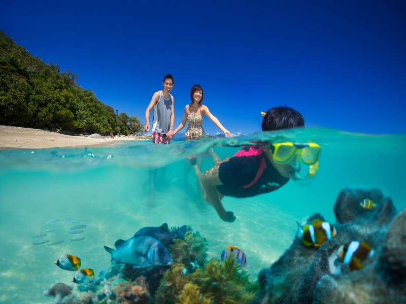 Snorkeling over the Great Barrier Reef surrounding Fitzroy Island | Discover Queensland