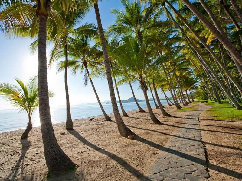 Palm Cove Esplanade | Discover Queensland