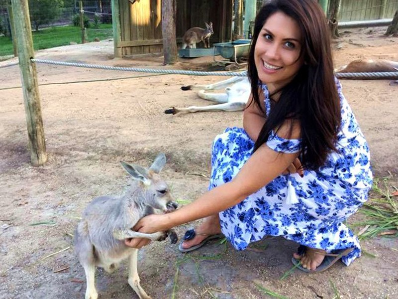 Kangaroo Sunset Tour at Paradise Country Farmstay | Discover Queensland