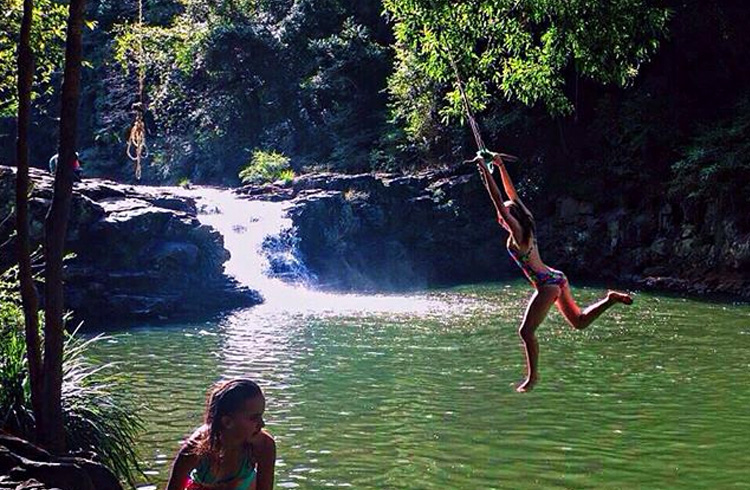 Gardner Falls on the Sunshine Coast - Best Things to do with Kids on the Sunshine Coast - Discover Queensland
