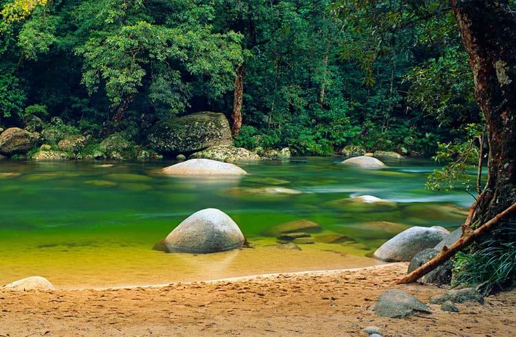 Mossman Gorge, the best swimming hole in the Daintree Rainforest outside of Port Douglas | Your Guide to Port Douglas | Discover Queensland