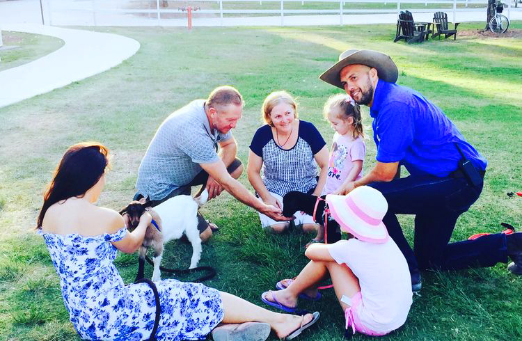Animal Meet and Greet at Paradise Country   Your Gold Coast Farmstay Weekend Itinerary   Discover Queensland