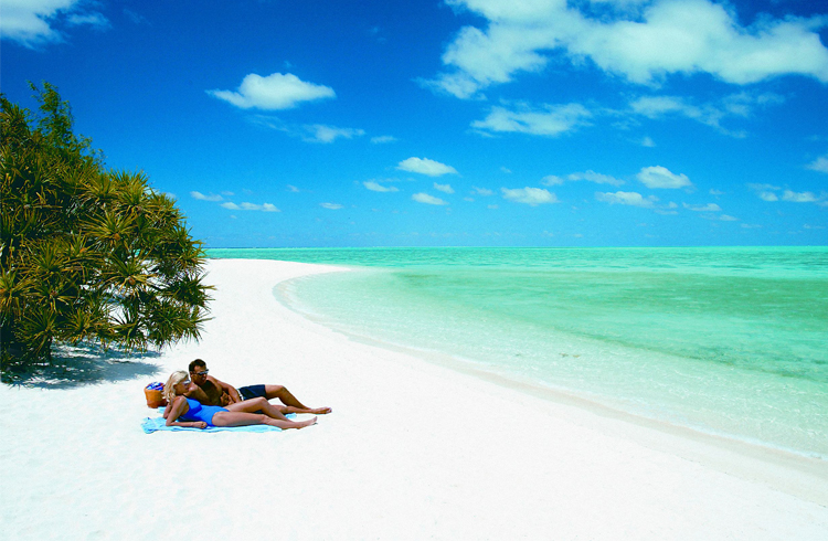 Heron Island off the Coast of Gladstone - Top 5 Queensland Island Holidays - Discover Queensland