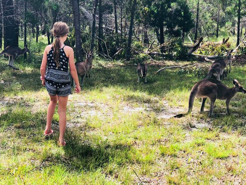 Meeting the Kangaroos | Our 3 Night Escape to Beach Road Holiday Homes at Noosa Northshore | Discover Queensland