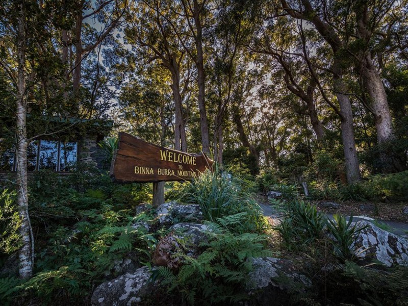 Photos That Will Make You Want To Visit Binna Burra Lodge in the Gold Coast Hinterland | Discover Queensland