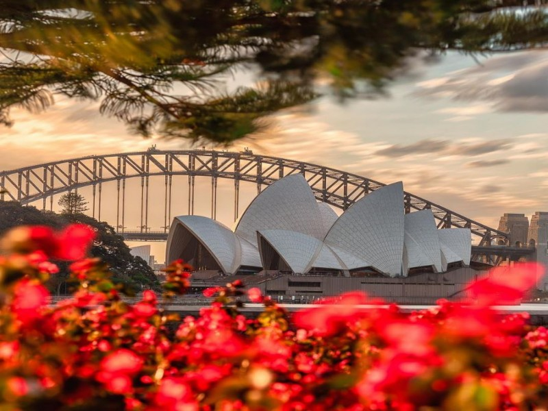 How to spend 48 hours in Sydney | Image by @mattfinphotography via Instagram | Discover New South Wales