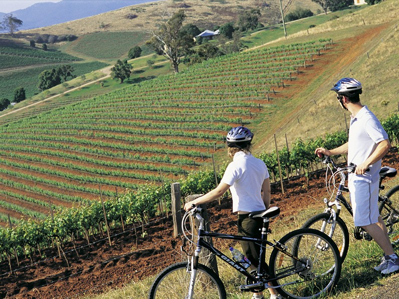 How to spend a long weekend in the Hunter Valley - Discover New South Wales - Bike Riding Through the Hunter Valley - Image by Destination New South Wales