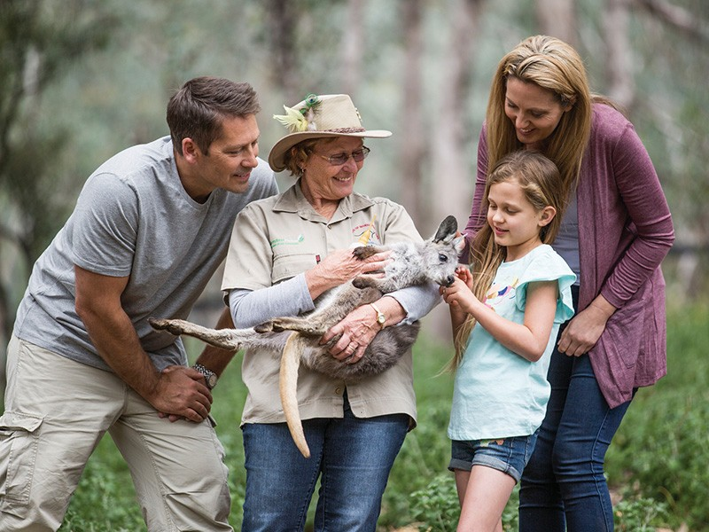 The best family friendly activities in Tamworth - Discover New South Wales - Tamworth Marsupial Park - Image by Destination NSW