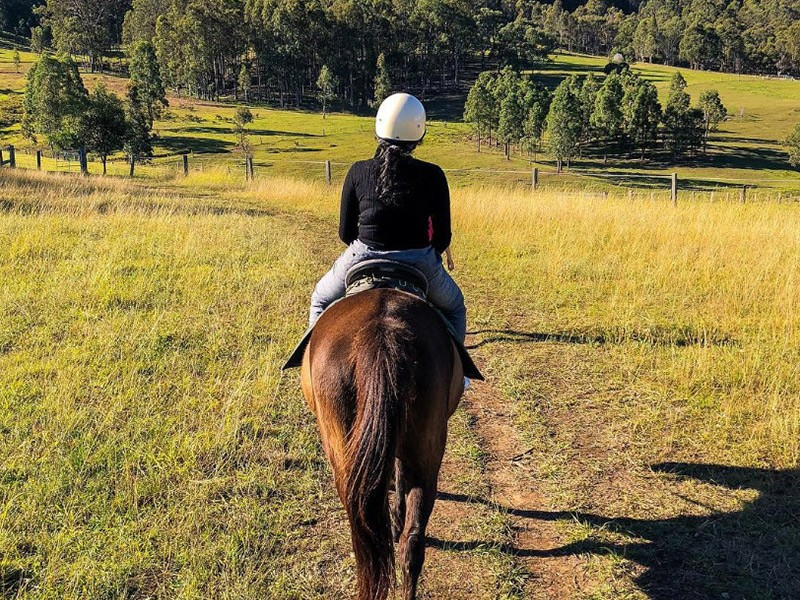Horse Riding in the Hunter Valley - Image via Instagram @ankith88