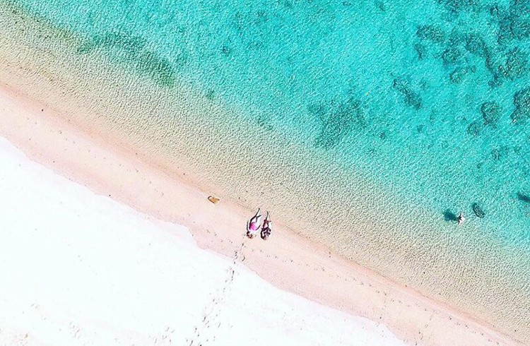 Orpheus Island   Our Top 4 Luxury Island Resorts   Discover Queensland