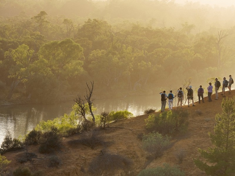 Walk the Murray by www.murrayriverwalk.com.au | 5 Ways to Travel the Murray River (and what to do along the way!) | Discover Victoria