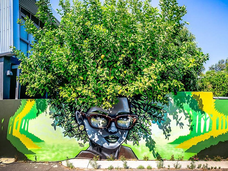 Where to get your culture fix in Perth | Street Art | Discover WA | Discover Western Australia