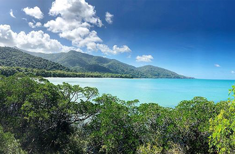 Cape Tribulation Beach Lookout | A Day in the Daintree | Discover Queensland