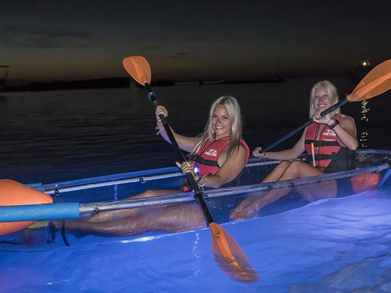 Illuminated Shipwreck Tour   Top 30 Things to do at Tangalooma Island Resort on Moreton Island   Discover Queensland