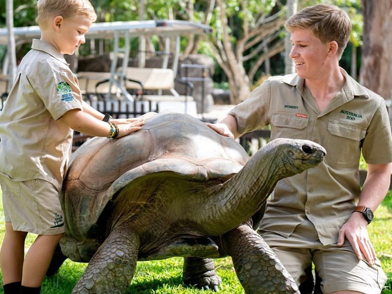 Australia Zoo - Sunshine Coast Things To Do - Discover Queensland