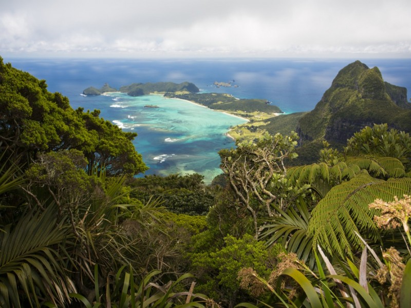 Lord Howe Island | Australia's Best Kept Travel Secrets Uncovered | Hightide Holidays