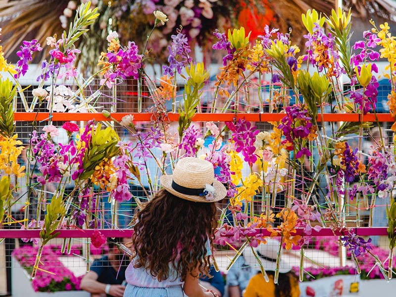 Townsville Festival of Flowers Image by @Udavekandotcom | Toowoomba Things To Do | Discover Queensland | Outback Queensland Road Trips