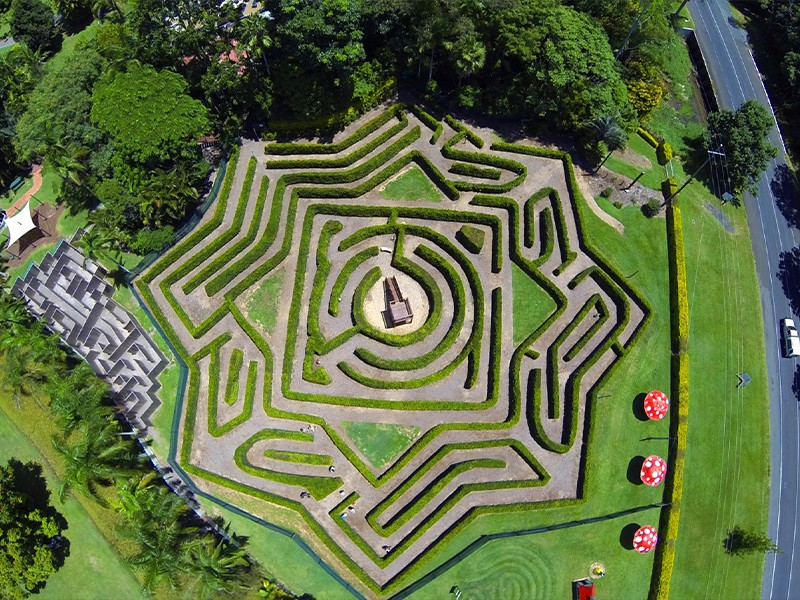 Bellingham Maze | Buderim Things To Do | Sunshine Coast Hinterland Highlights Brisbane Road Trip | Discover Queensland