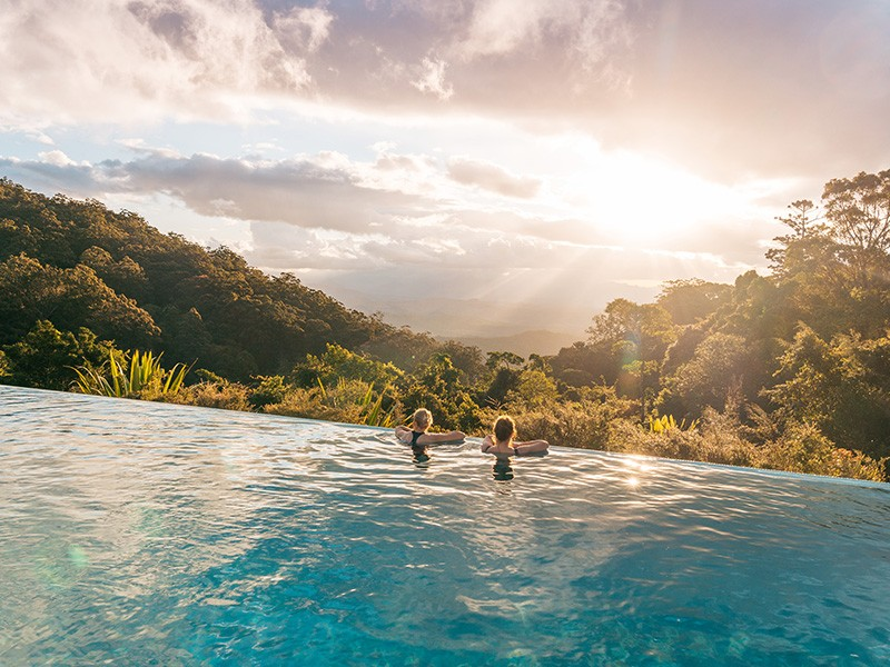O'Reilly's Rainforest Retreat Infinity Pool | Dive Into the Gold Coast's Best Resort Pools