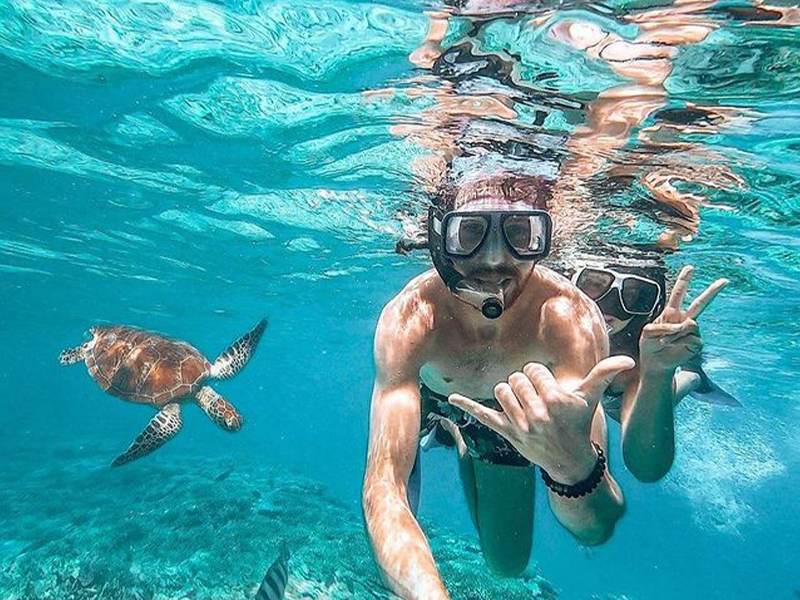 Lady Musgrave Island by @livelovelaughexplore_ | Top things to do in Bargara: Tipples, Turtles, Tastings, Towers & more! | Discover Queensland