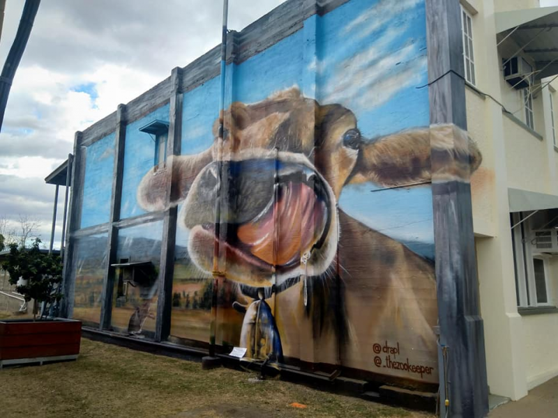 Monto Dairy Cow Street Art by DRAPL and the Zookeeper | Things to do in Monto: The Silo Art Trail | Discover Queensland